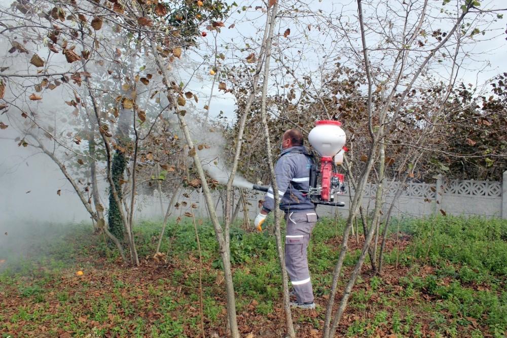 Fındıkta aflatoksinden kurtulmanın en bilimsel yolu: 'Bentonit kili'