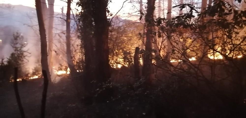 Ordu'da örtü yangını evlere sıçramadan söndürüldü