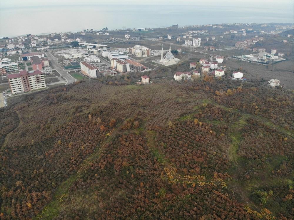 Ordu'ya yapılacak bin yataklı şehir hastanesinin yeri havadan görüntülendi