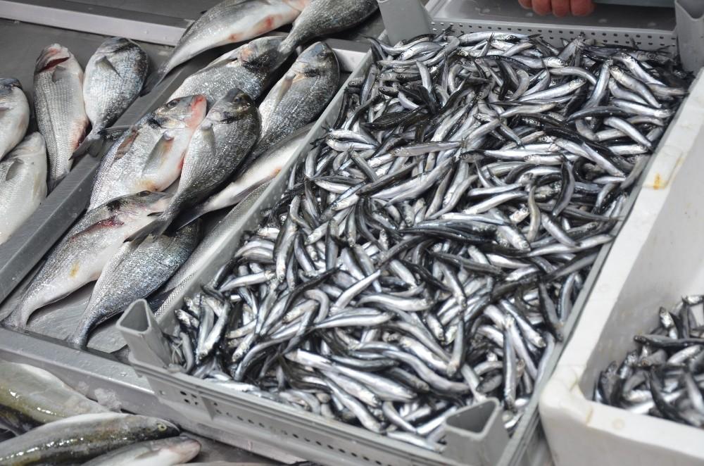 Kar yağışları balık tezgahlarını etkiledi