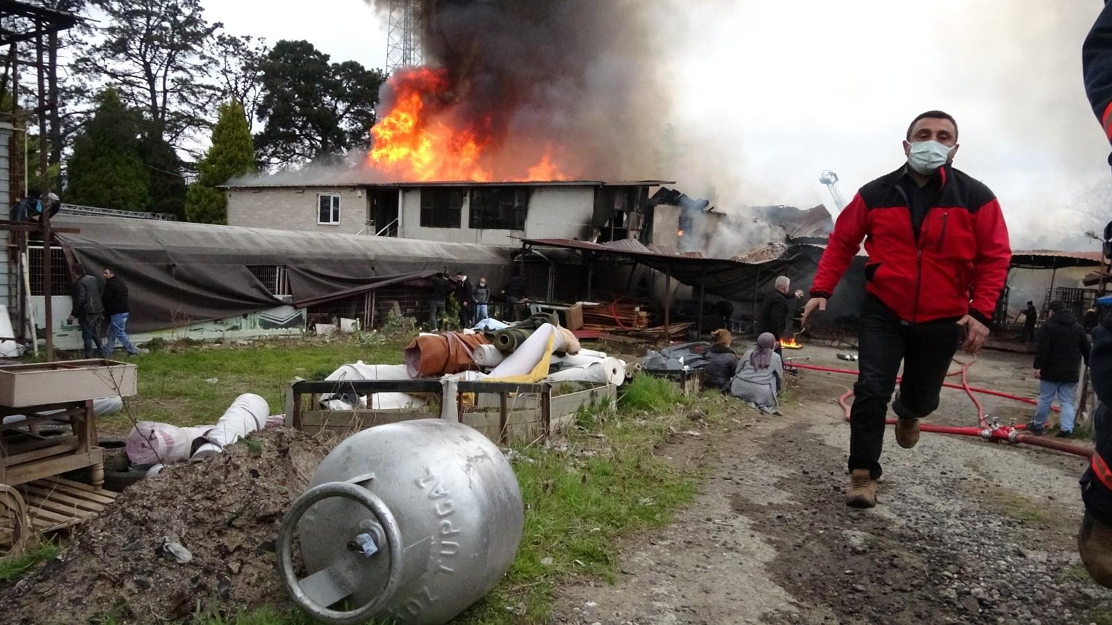 Ordu'da çıkan yangında iki bina küle döndü