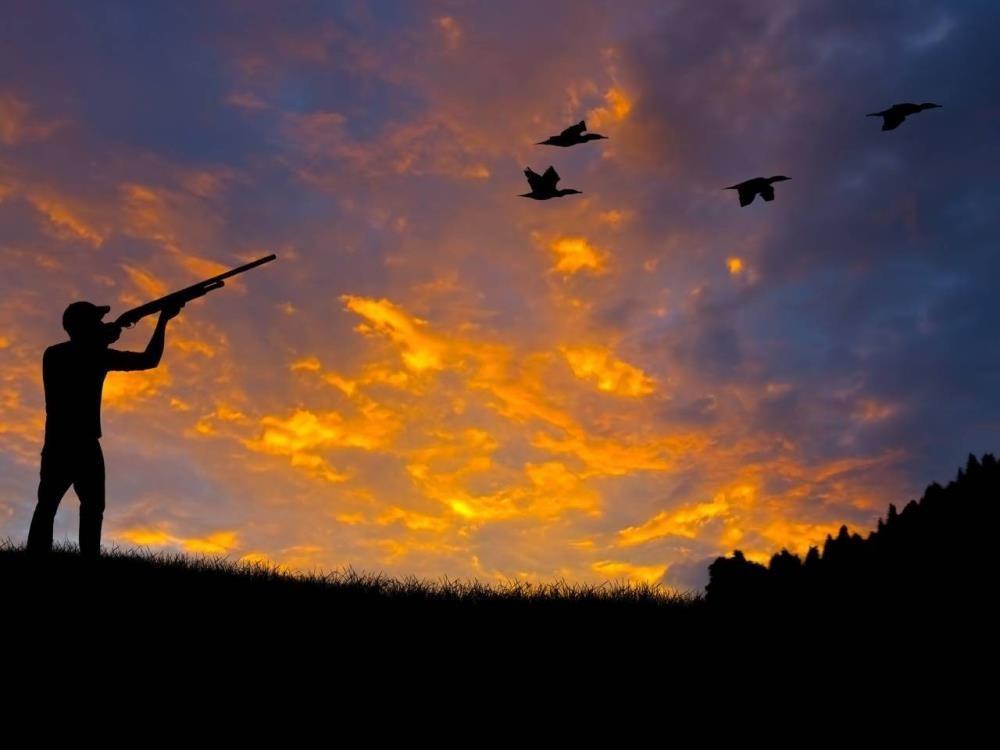 Ordu'da avcılara 78 bin lira ceza