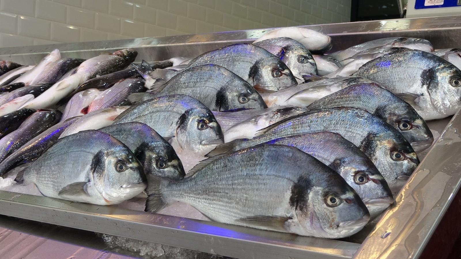 Tezgahları kültür balıkları süslüyor